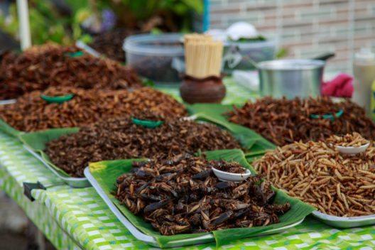 In vielen Teilen der Welt gelten Insekte als Delikatesse. (Bild: Khunjompol – Shutterstock.com)