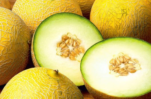 Die Galia-Melone (Bild: ResolutionDigital – Shutterstock.com)