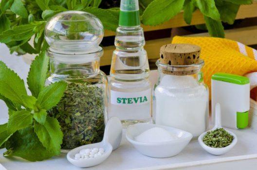 Stevia (Bild: Pat_Hastings – Shutterstock.com)
