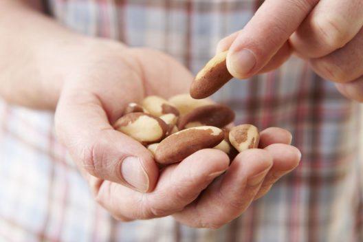 Die Paranuss ist eine wichtige Selenquelle. (Bild: SpeedKingz – Shutterstock.com)