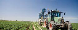 Lamb Weston - Die Reise der Kartoffel - Landwirtschaft