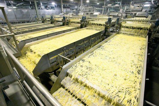 Lamb Weston - Die Reise der Kartoffel - Produktion (Bild: © Lamb Weston / Meijer vof)