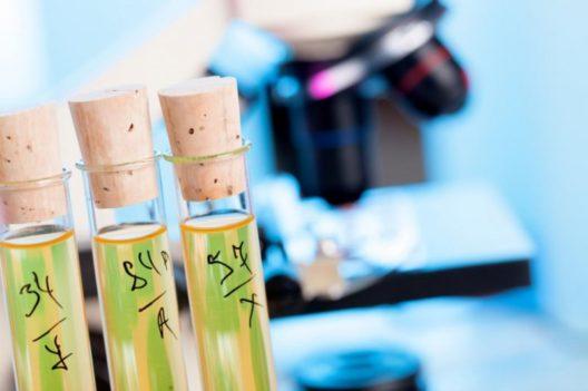 Die Texturanalayse ist ein wertvolles Tool im Kooperationsprojekt FoodLink. (Bild: © Science Photo/Fotolia)