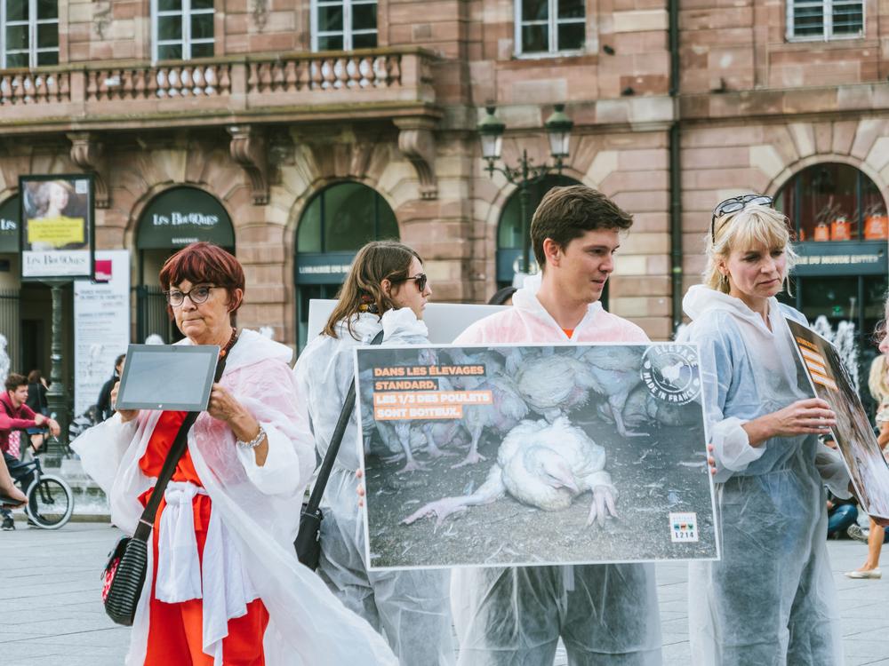 Viele Veganer sind sehr missionarisch eingestellt: hier eine Veganer-Demo in Straßburg 2017. (Bild: Hadrian / shutterstock)